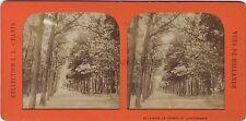 La Haye Scheveningue Pays-Bas Holland Stereo Diorama Léon et Lévy Paris Tissue
