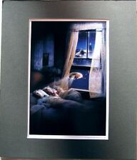 Batteries Not Included Movie Art Poster Print Matted