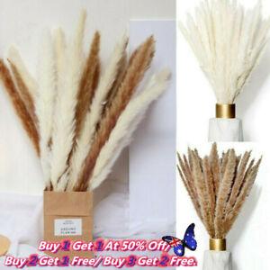 15PCS Artificial Natural Dried Pampas Grass Flower Bunch Wedding Bouquet Decor