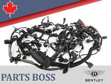 Bentley Continental 2003-2012 OEM Engine Harness 07C971610AT