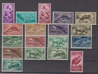 SPAIN - RIO MUNI - YEAR 1964 MNH COMPLETE - EDIFIL 42/59