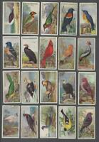 1924 Ogden's Foreign Birds Tobacco Cards Complete Set of 50