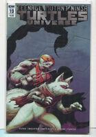 Teenage Mutant Ninja Turtles Universe #19 NM Cover B IDW Comics CBX35