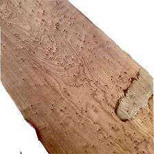 """Roasted Birdseye Maple 🍁 🎸Fretboard Top Lumber Sanded Bass .3""""x8x40"""" Wide"""