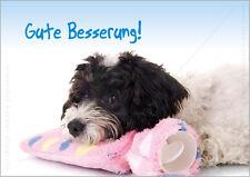 "A6 Postkarte Grußkarte Tierpostkarte Karte Hund Wärmeflasche ""Gute Besserung!"""