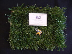 Minnesota Vikings Game Used Field Turf from Metrodome! Adrian Peterson