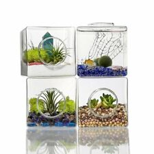 4x Square Glass Flower Hydroponic Vase Landscape Bottle Terrarium Container