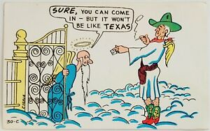 Sure you can come in but it won't be like Texas funny humor comic Postcard