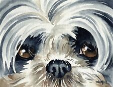 SHIH TZU Painting DOG Watercolor 8 x 10 Art Print Signed by Artist DJR
