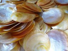 Mother of Pearl seashells round 4 inches 100 pcs Wow
