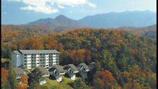Mountianloft Gatlinburg  Tn 1 Bedroom Deluxe Villa 9/7-9/11