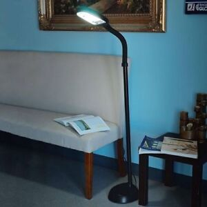 Better Homes and Gardens Full Spectrum Fluorescent Cool Daylight Floor Lamp