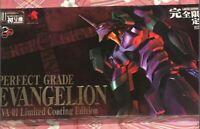 Evangelion Plastic Model PERFECT GRADE Limited Coating Edition Japanese Anime
