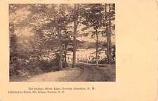 Newton Junction New Hampshire Silver Lake Bridge Antique Postcard K90198