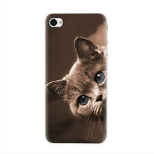 Black Cat Staring Eyes Hard Case for iPhone XS Max XR X 8 7 6 Plus