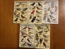 Birdsong Identiflyer If03 5 Cards Yard 1&2 Forest, Birds of Night, Forest edge