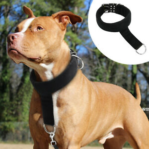Dog Obedience Training Collar Gentle Stop Pulling Padded Head Collar for Pitbull