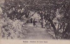 # SUBIACO: BOSCHETTO DEL SACRO SPECO