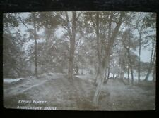 POSTCARD ESSEX EPPING FOREST AMBRESBURY BANKS