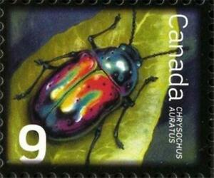 Canada 2010 📭🐞🐜🐛 DOGBANE BEETLE Single 🐛🐜🐞📭  MNH ~ Scott # 2410
