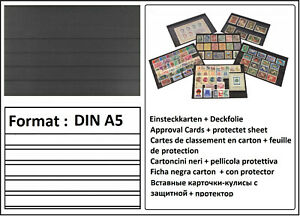 100 LOOK DIN A5 Einsteckkarten Steckkarten Klemmkarten 5 Streifen + Deckfolie