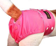 Glenndarcy Female Adjustable Smarty Pants  I Urine Incontinence I Poppers