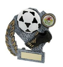 "14 x 4.1/4"" Football Awards (RRP £3.50 each) with free engraving and postage"