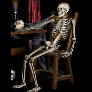40CM Life Size Human Skeleton Model Medical Anatomical Posable Movable Props