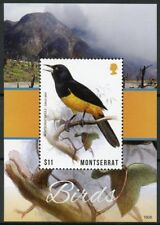 Montserrat 2018 MNH Birds Montserrat Oriole 1v S/S Orioles Bird Stamps