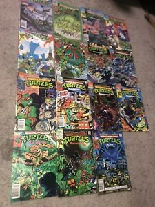 Teenage Mutant Ninja Turtles Adventures Comic Lot (17 Total)