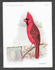 Trade Card Singer Sewing Machines American Song Bird Cardinal #7