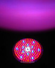 Red Blue Orange White 168 LED  Grow Light Bulb 110 V 16 Watt