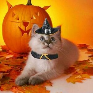 Halloween Cat Wizard Hat Products That Transform Into Scarf Hat Wizard O1V0 F5Y7