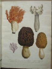 ROQUES : ATLAS POUR L'HISTOIRE DES CHAMPIGNONS, 1832. 24 planches coloriées.