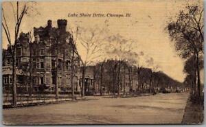 "Vintage CHICAGO Illinois Postcard ""Lake Shore Drive"" Street Scene 1910 Cancel"