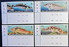 British Antarctic Territory 1999 Fish Set. MNH.