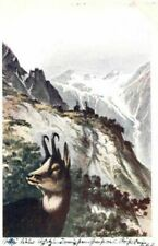 Künstler Ansichtskarten aus Österreich