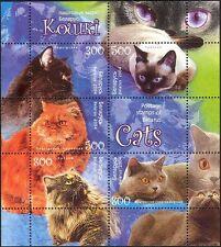 Belarus 2004 Domestic Cats/Pets/Animals/Nature 5v m/s (n13069)