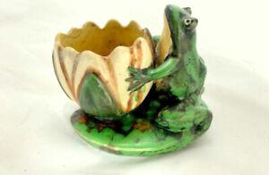Coppertone Frog