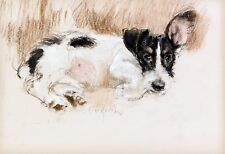 "Neil Forster, Drawing, Jack Russell Dog, antique Decor, 16""x11"" ART PRINT"