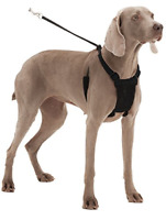 SPORN No Pull Dog Harness Black Extra Large