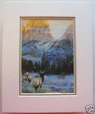 Wintering With the Wapiti by Julie Kramer Cole Indian