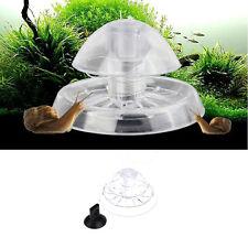 Plastic Aquarium Snail Trap Pest Catcher Fish Plant Tank Bait Feed Box 6*4cm