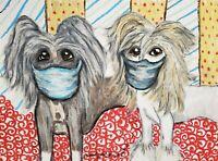 Chinese Crested Quarantine Dog Art Print 11 x 14 Signed by Artist KSams Vintage