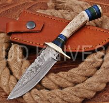 8 INCH UD CUSTOM DAMASCUS STEEL HUNTER KNIFE Stag/ANTLER  HANDLE B1-13121