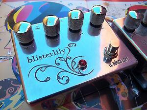 El Musico Loco The Blisterlily