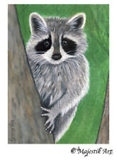 "Raccoon Racoon Animal ACEO Print ""Is it safe?"" By V Kenworthy"