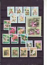 Verzameling/Collection/Sammlung - Bloemen / Flowers / Blüte  (Orchids )