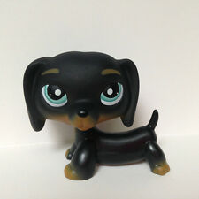 #325 Littlest Pet Shop Black Dachshund Dog Chien Teckel Puppy Blue Eyes LPS Rare