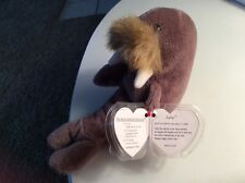Collectible Ty Beanie Baby Jolly The Walrus Retired
